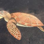 """Turtle"" (Oil Pastels) by Rebecca Sweeney"