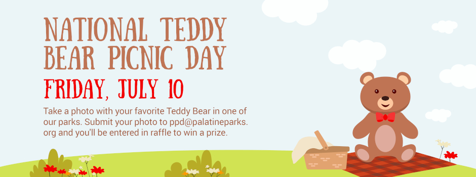Participate in National Teddy Bear Picnic Day