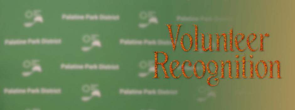 2020 Volunteer Recognition