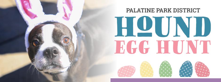 Hound Egg Hunt